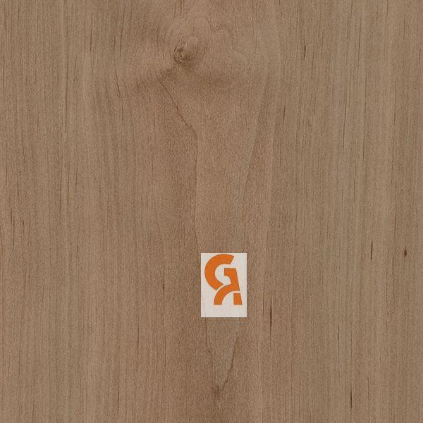 אלמון ערפילי - 5732